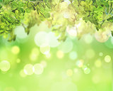 3D green leaves on bokeh lights background