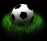 Soccer Ball on Grass. 3D illustration.