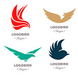 Isolated colorful flying birds vector logo set. Animal logotypes collection.