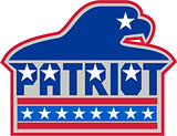 American Bald Eagle USA Flag Retro