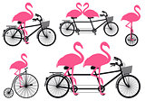 flamingo on bicycle, vector set
