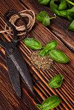 Aromatic culinary herbs, basil.