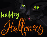 Halloween illustration with black cat. Helloween handwritten lettering. Vector illustration. EPS10