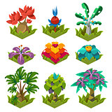Garden Plants with Flowers for Game