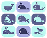 Collection of Whale Icons