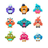 Colourful Cute Birds Vector Illustration Set