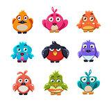 Cute Colourful Birds Vector Illustration Set
