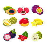 Colourful Exotic Tropical Fruits Set