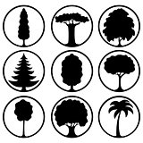 Icons of different trees