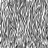Seamless zebra color pattern