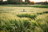 Child in rye field