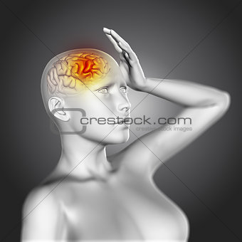 3D female figure with brain highlighted