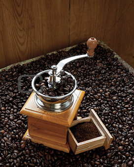 Beans of coffee and coffee-grinder