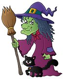 Witch with cat and broom theme image 1