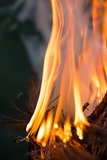 Bonfire, Burning branches, macor fire and smoke, close-up