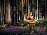 Beautiful blond girl sitting on a chair and reading book in the forest.