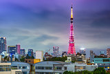 Tokyo Tower and Cityscape