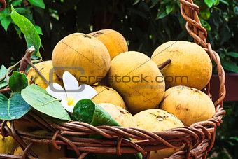 Santol fruit in a basket