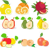 Set of fruits, lemon, apple, orange, pomegranate, pear, apricot, peach, vector illustration.