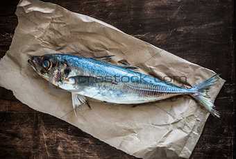 A fresh horse mackerel on a rustic paper.