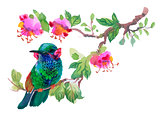 Watercolor colorful Bird on branch with green leaves and flowers.