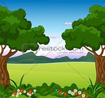 beauty landscape with flower garden