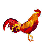 Vector image of red rooster in paper cut style.