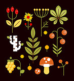 Autumn Natural Wood Elements in Flat Style, Vector Illustration Set