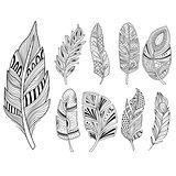 Ornamental Feathers in Handdrawn Style. Vestor Illustration Set