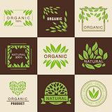Eco Organic Labels Set
