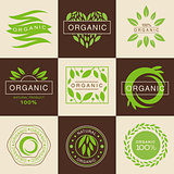 Eco Organic Labels and Tags Set