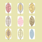 Leaf Icon Collection Vector Illustration in Linear Style