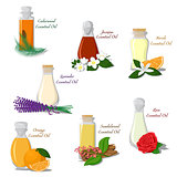 Vector set of Essential Oils
