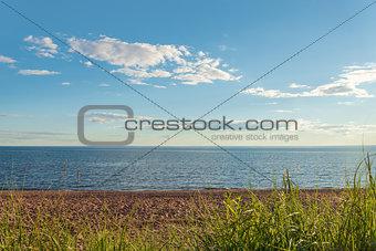 Beach in Cedar Dunes Provincial Park