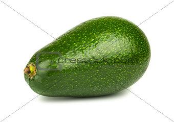Single green avocado