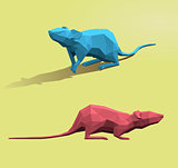 Polygonal rat