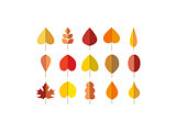 Vector autumn leaves red, orange yellow colors