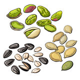 Collection of pistachio, sunflower and pumpkin seeds