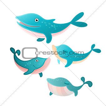 Four whales set