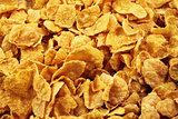 Corn Flake Close Up