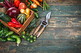 Harvest fresh vegetables on old wooden board