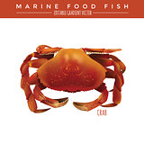 Crab. Marine Food Fish