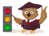 Owl teacher and traffic light