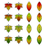 Autumn Leaf Set for Designing
