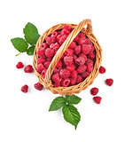 Fresh raspberries in wicker basket with green leaves