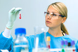 woman working with analysis test samples in a laboratory