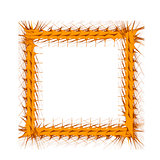 Decorative Yellow Frame