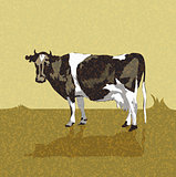 Vintage old card with a cow. vector illustration