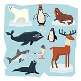 Arctic and Antarctic Animals, Fish Set