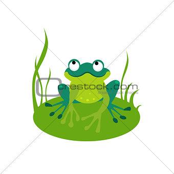 Green Cartoon Frog Vector Illustration